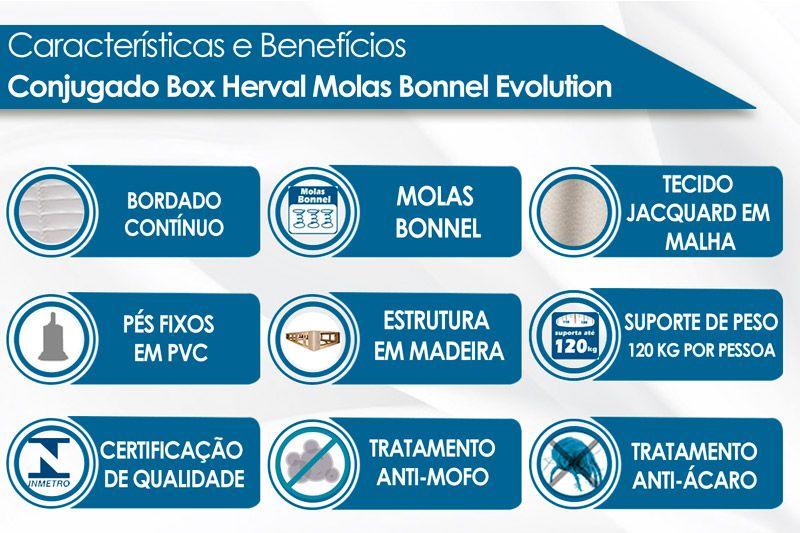 Conjugado Box Herval Molas Bonnel Evolution