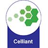 Colchão Castor Molas Pocket Light Stress Oxygen New D.F -  Tipo Tecido de Forração Revestimento