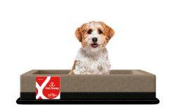 Colchão Box Pelmex Pet Foam p/ Cães e Gatos